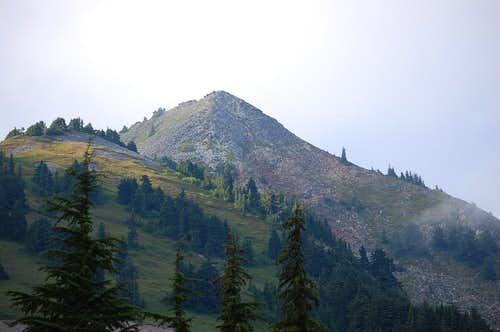 Looking towards the summit of Silver Peak from the south