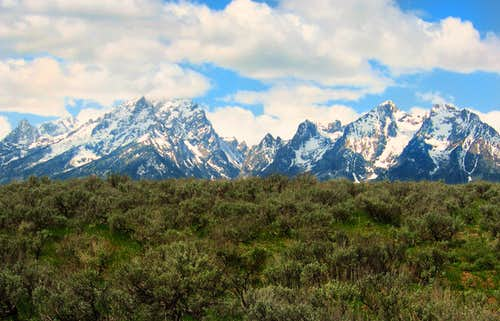 The Tetons in May