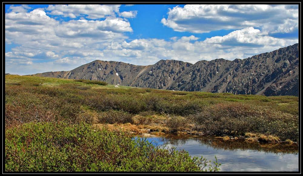 Marsh and Mountains