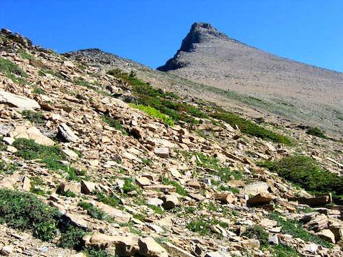 Flinsch Peak, from just below Dawson Pass.