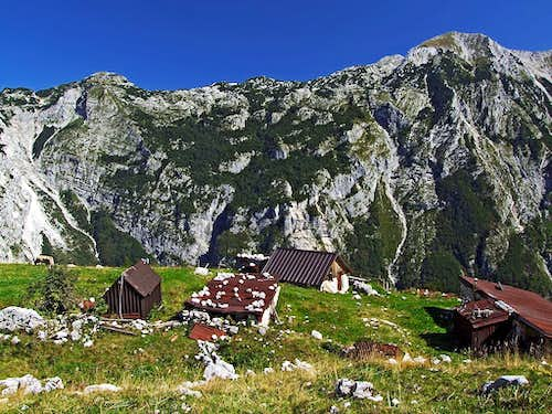 Lasca alpine meadow