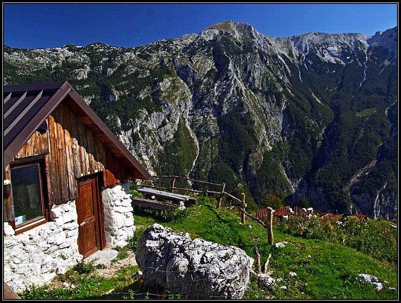 Lasca alpine meadow