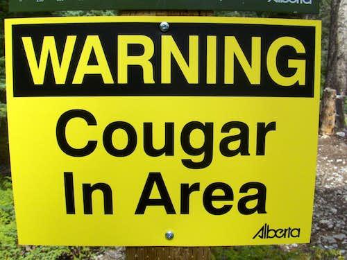 Cougar Canyon