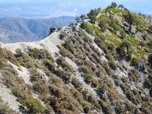 Devil\'s Backbone Race Route to Mt. Baldy