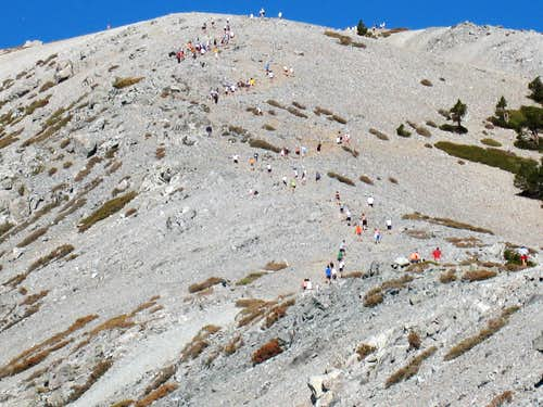 Racers Nearing Mt. Baldy Summit