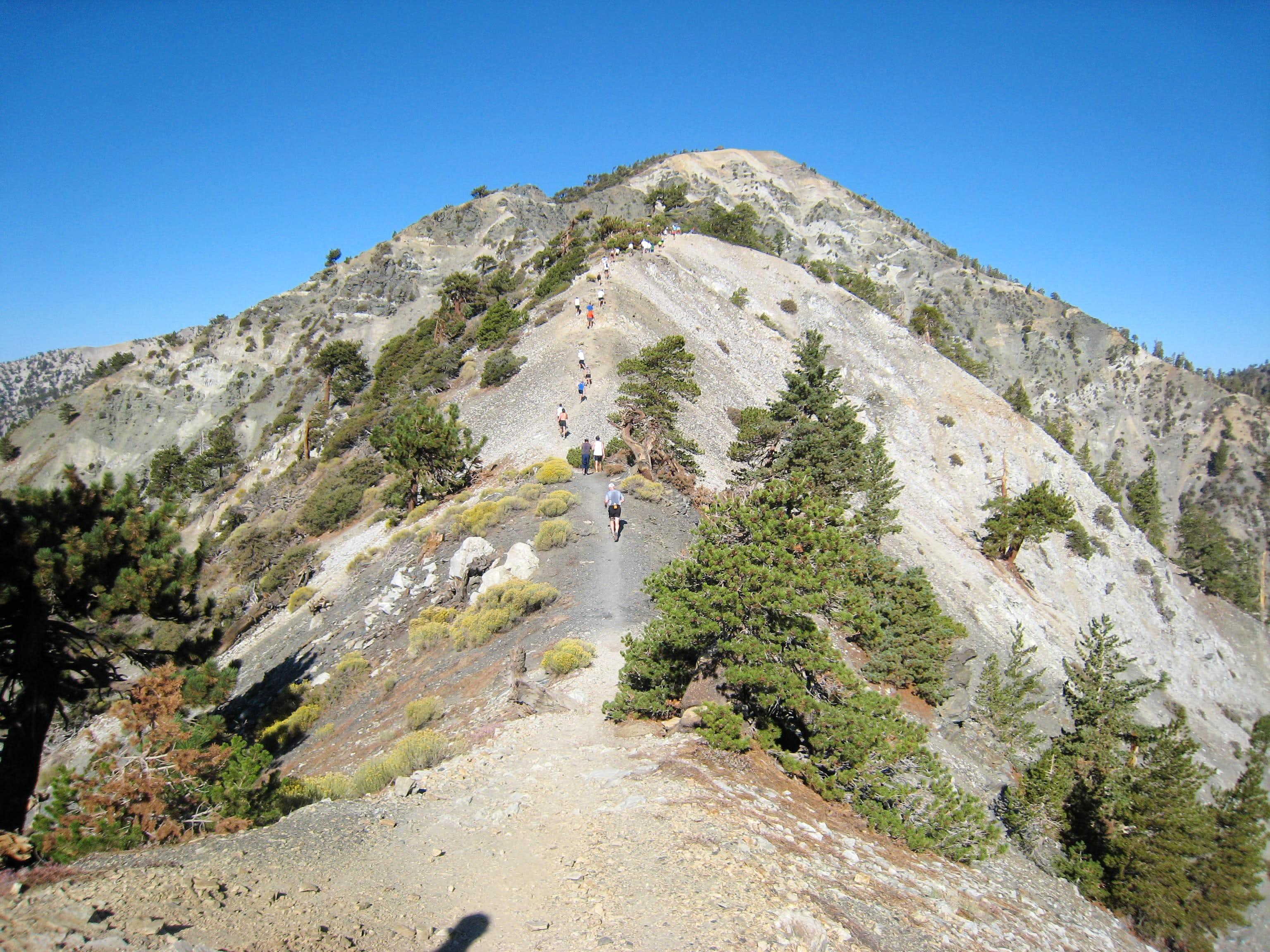 2007 Mt. Baldy Run-to-the-Top