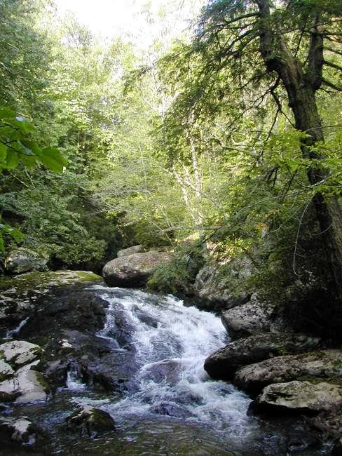 There are some nice campsites...