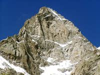 Grandes Jorasses east face