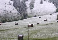 Cattle Houses