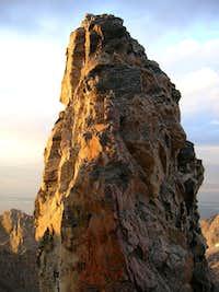 Teepe Pillar