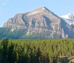 Mount Fairview in summer.