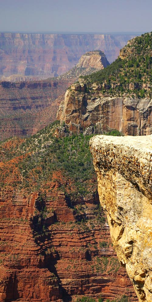 Cross Section of the Canyon