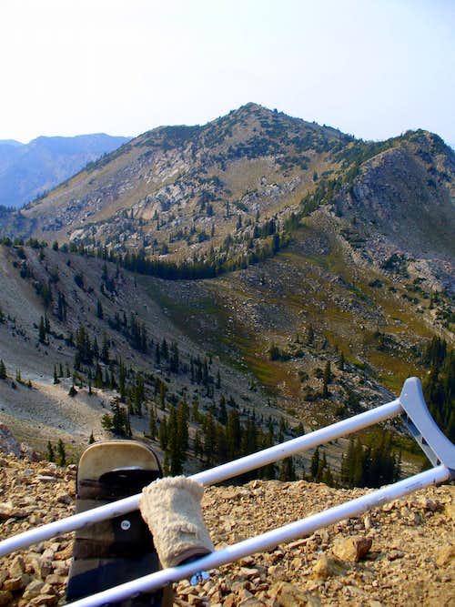 The leg, the crutch, the peaks