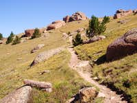 Ute Creek Trail