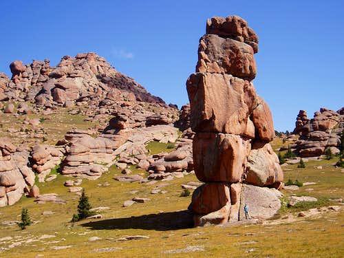 Bison plateau