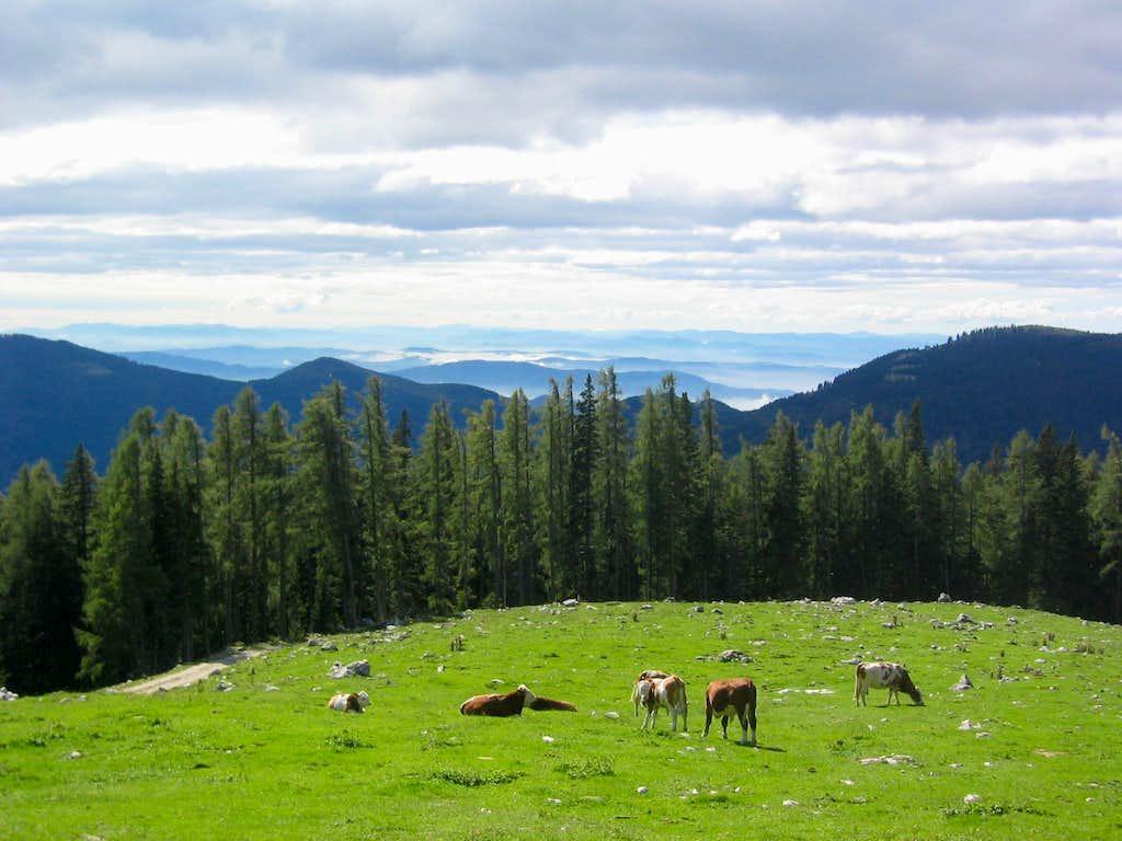 Kamniske Alpe landscape