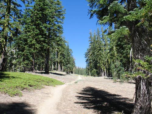 Trail to camp