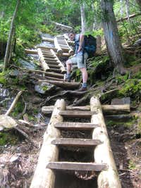 The ladders on  the Willey Range Trail