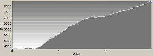 Profile of Chute Route