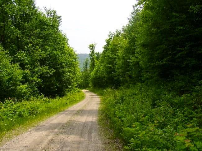 Mill Brook Road