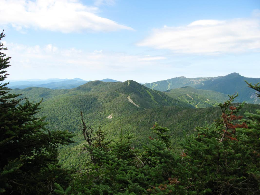 mountain and the greenary - photo #24