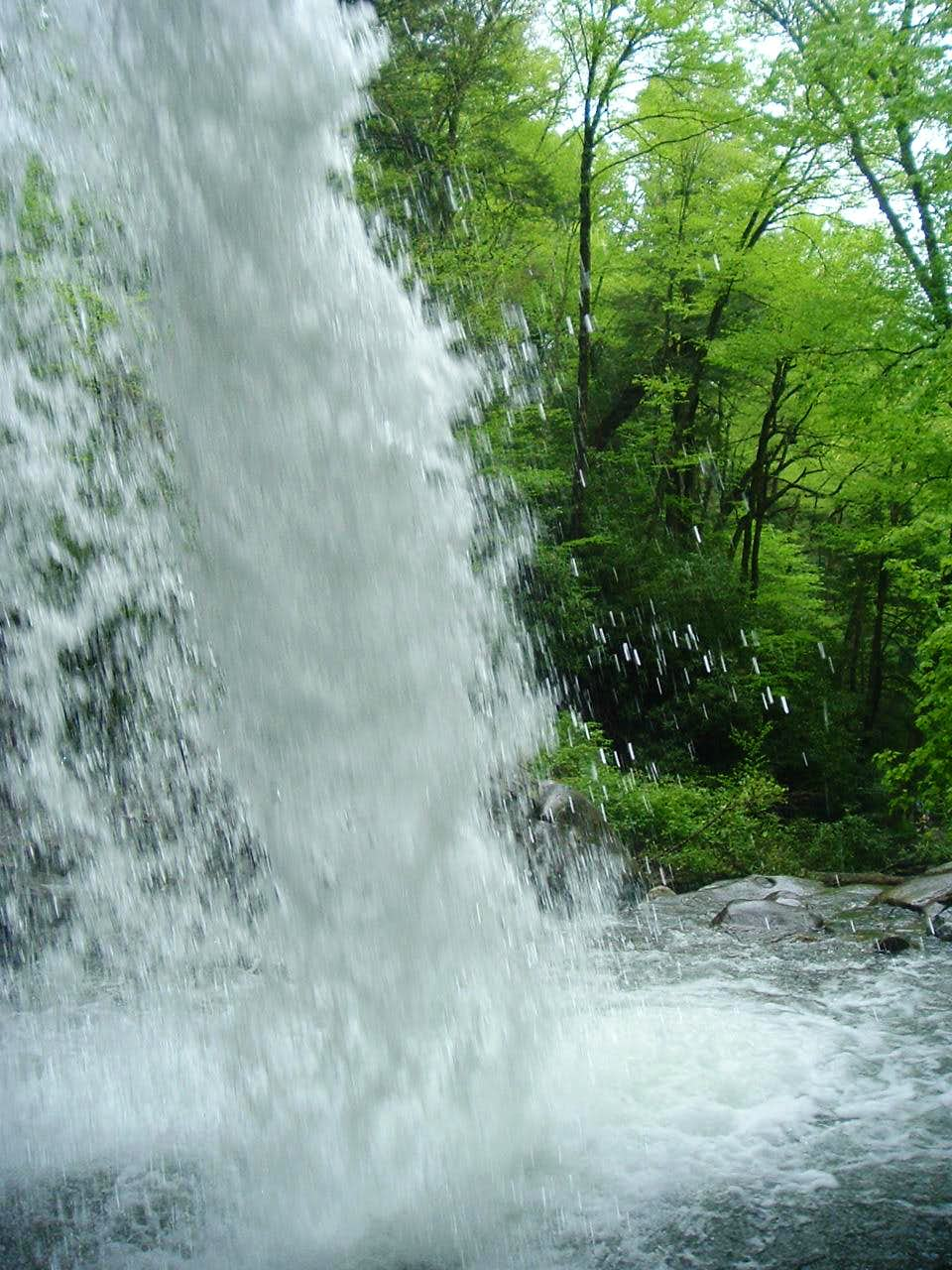 Grotto Falls from behind