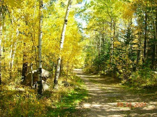 View along Bear Mountain Trail