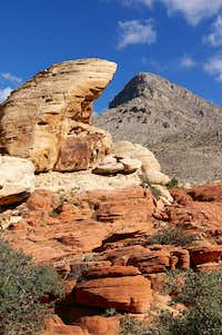 Turtlehead  at Red Rock