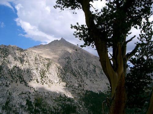 University Peak from East Ridge of East Vidette