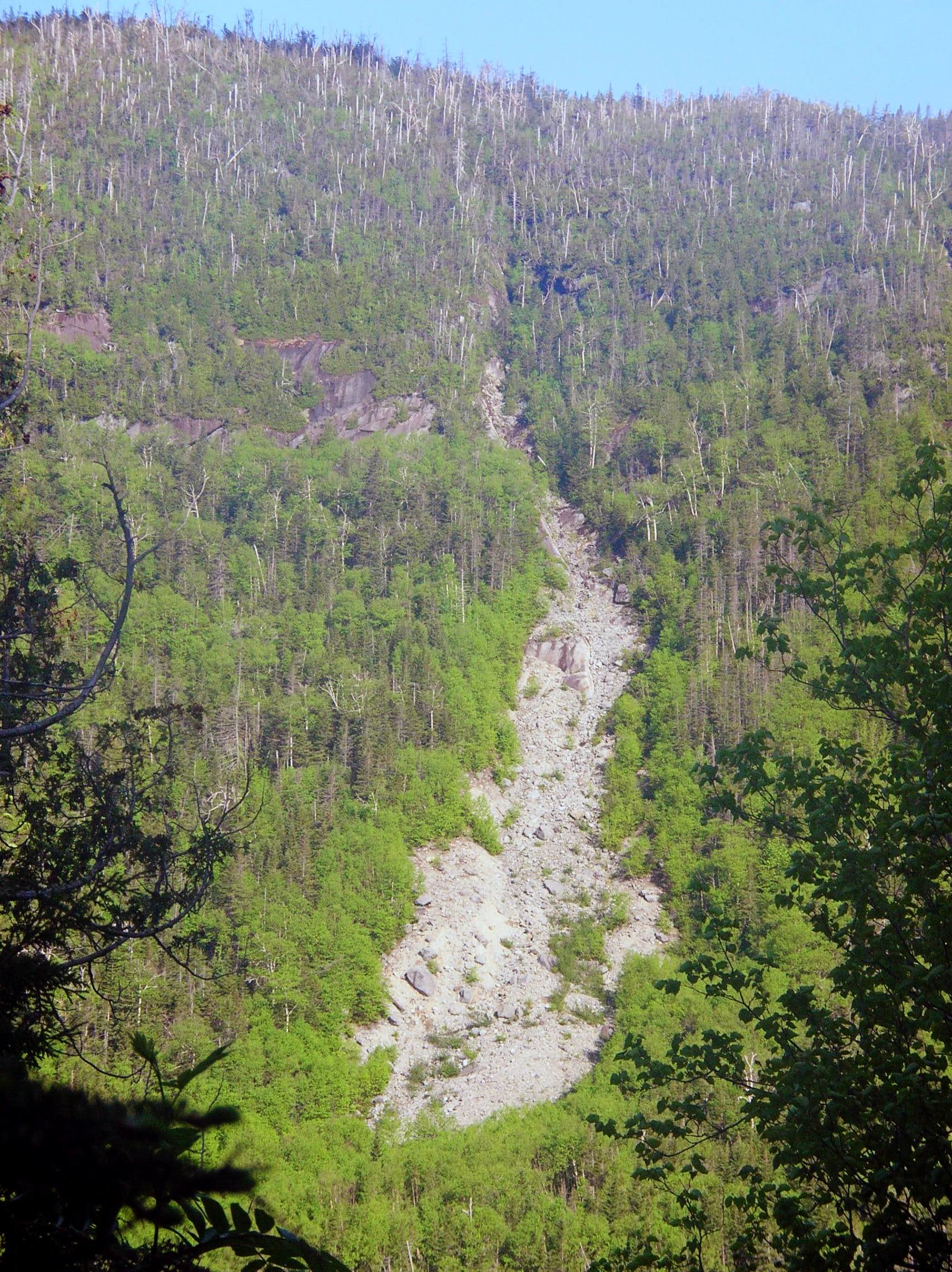 Cliff Mountain Slide and Redfield Bushwhack