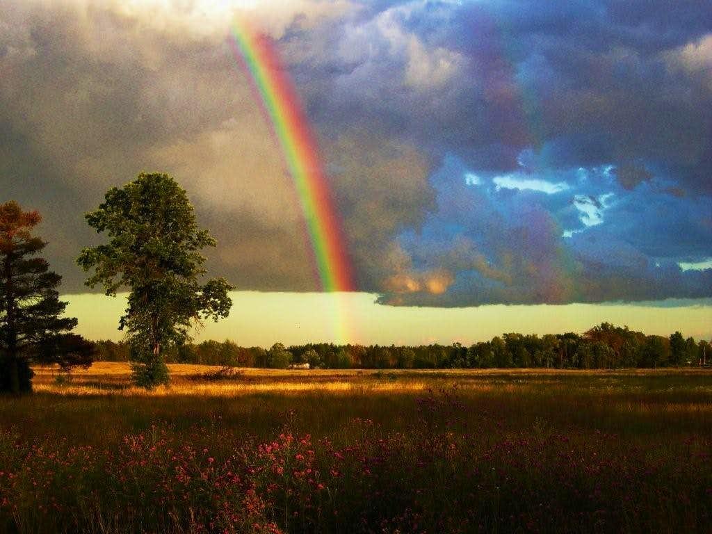 Early Evening Rainbow