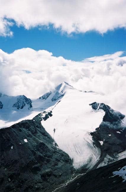 Similaun summit seen from...