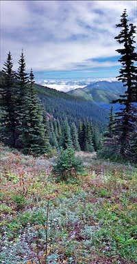 Along Mt. Townsend Trail 839