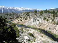 Mammoth Hot Creek