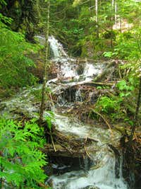 Calkins Brook Route - Cascade in Stream