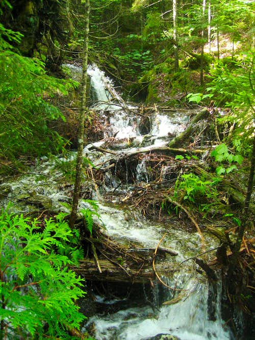 Calkins Brook Route - Cascade in Stream