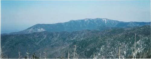 LeConte from the summit of...