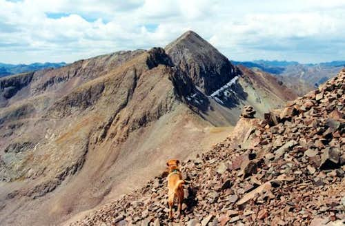 My dog Sopris on the route...