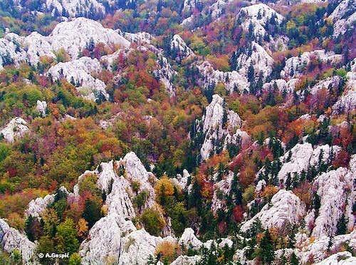 Crnopac autumn