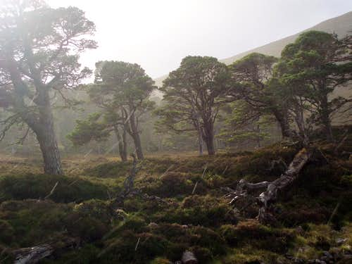 Glen Quoich- squally weather