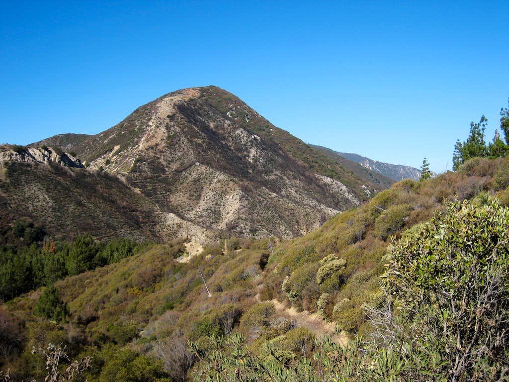 Hoyt Mountain (4,404'), San Gabriel Mtns.
