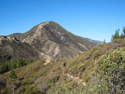 Hoyt Mountain (4,404 ), San Gabriel Mtns.