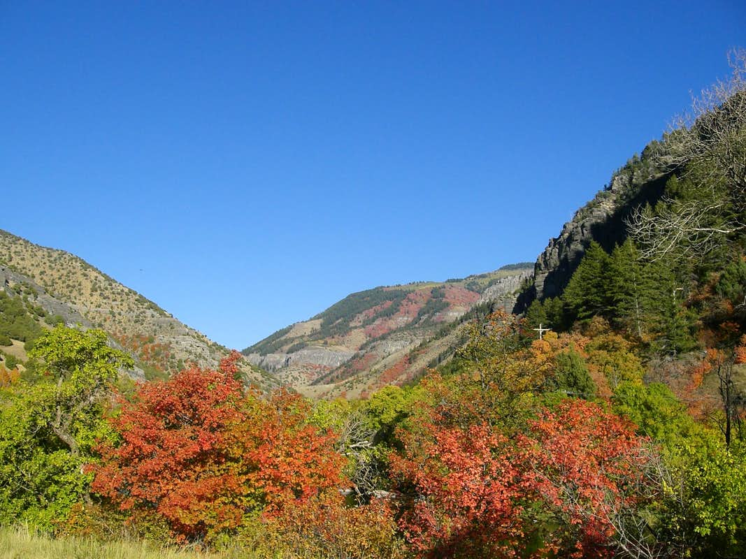 Logan Canyon in Fall