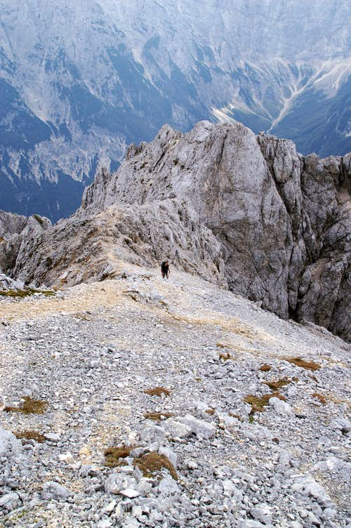 The lonesome man on the south ridge