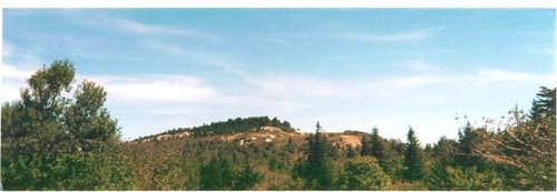 View to the summit of Spruce...