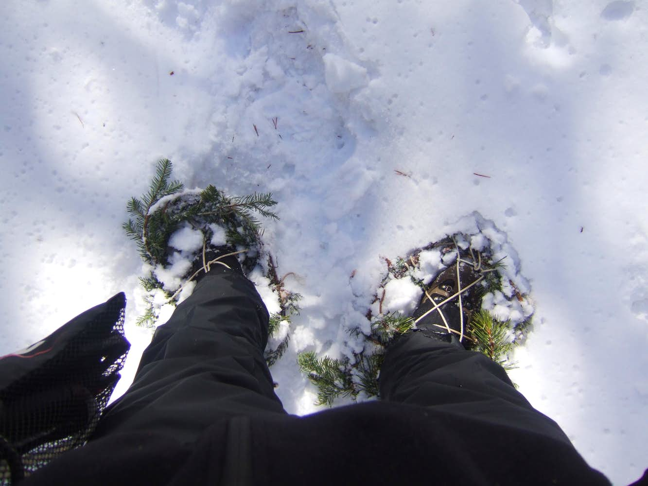 Homemade snowshoes
