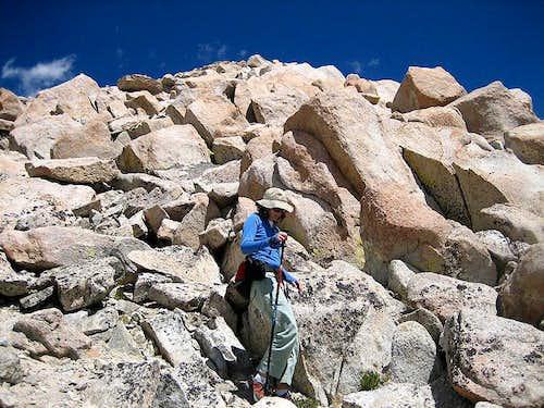 Mt. Julius Caesar - SW Ridge