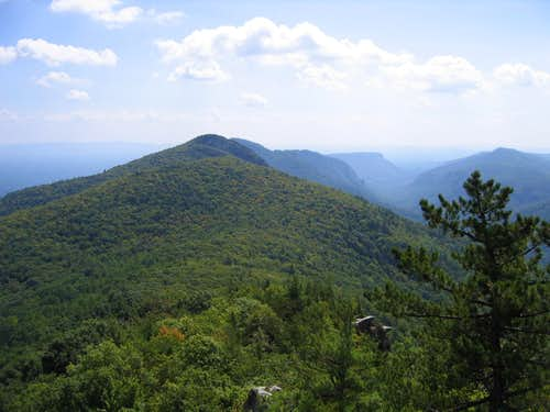 View of Hawksbill Mountain and Linville Gorge from summit of Sitting Bear Mountain