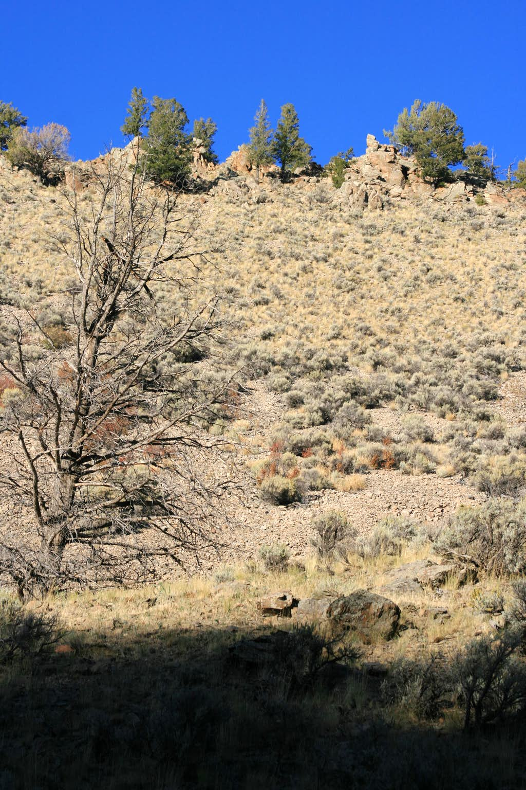 A possible scramble up Rattlesnake Butte
