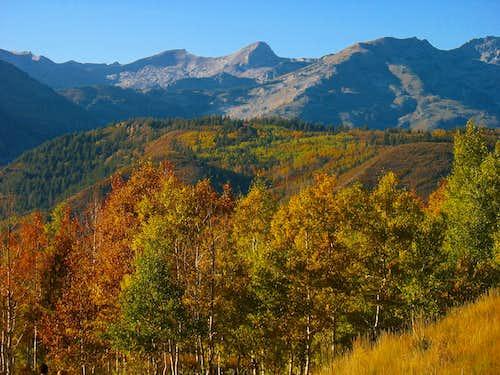 Fall colors below Pfeifferhorn